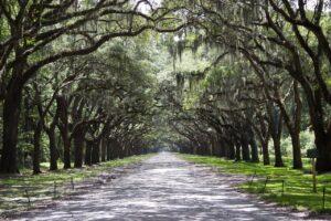 Can You Walk Around Savannah at Night?