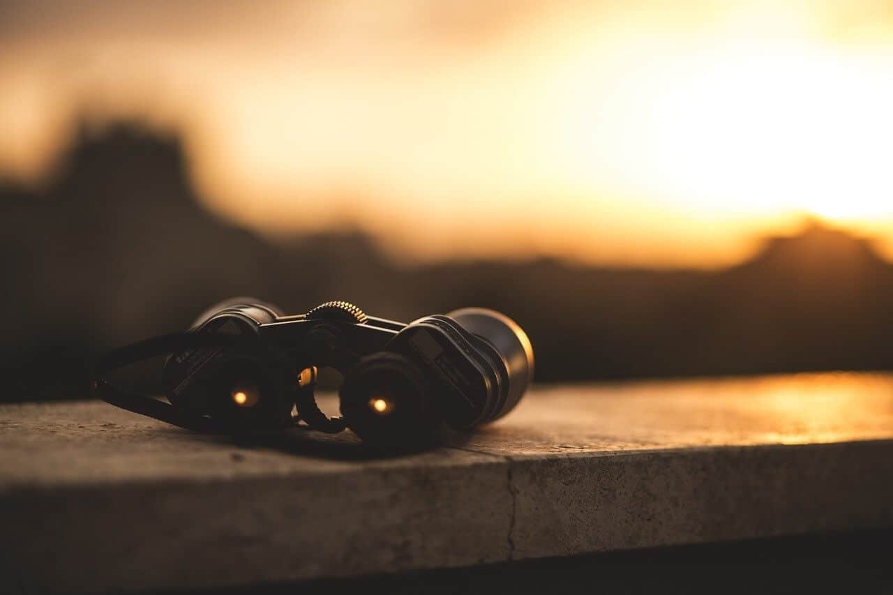 5 Best Marine Binoculars with Image Stabilization Reviews